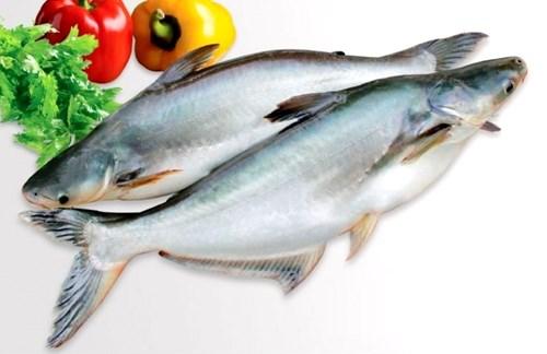 xuất khẩu cá tra sang thị trường Ai Cập